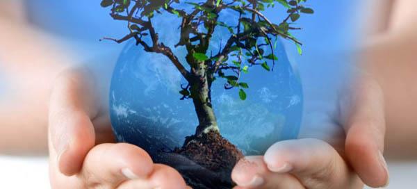 Medio-ambiente sustentabilidad