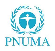 logo pnuma