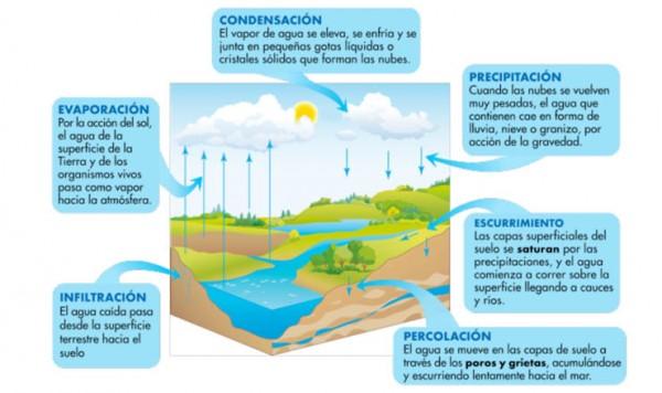 ciclo hidrológico